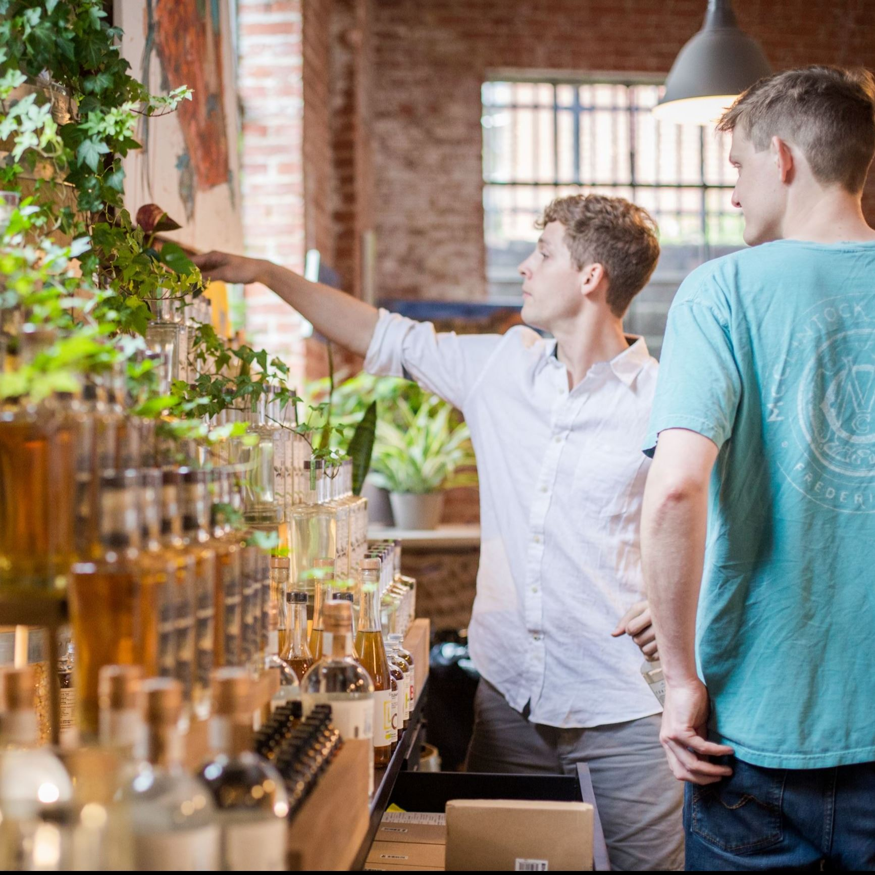 Two men perusing a shelf of alcohol bottles
