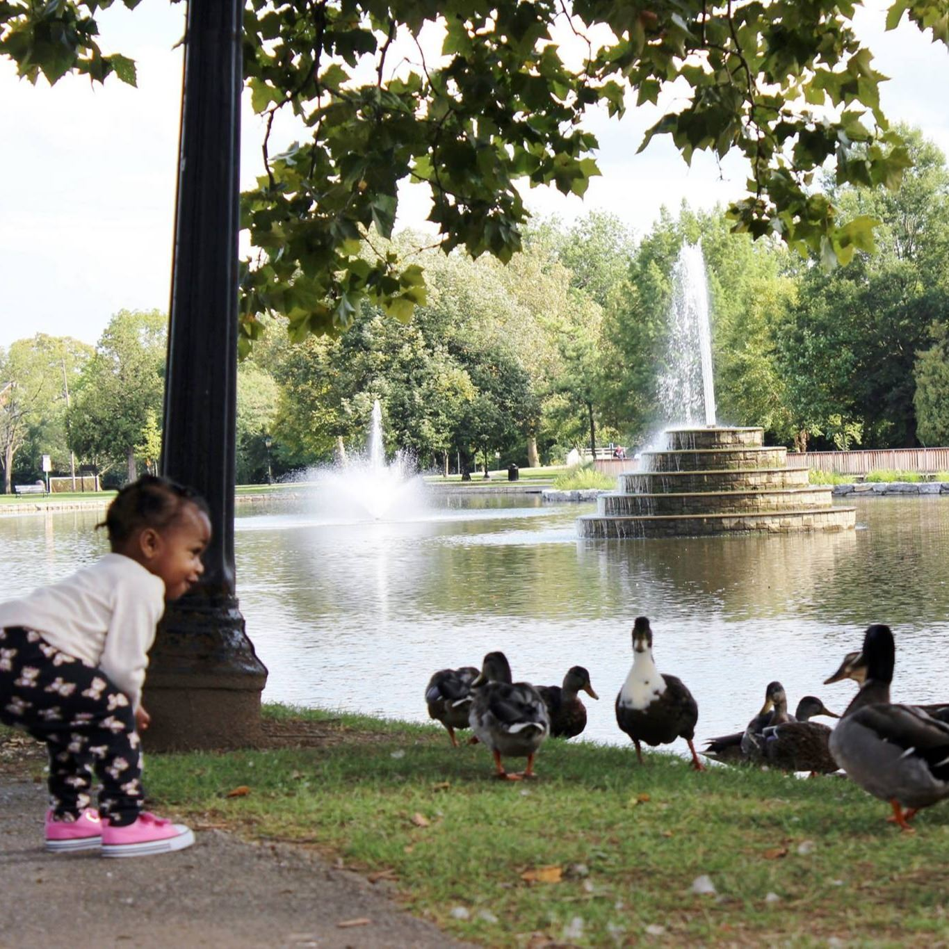 Young girl smiling at ducks at the side of a public pond